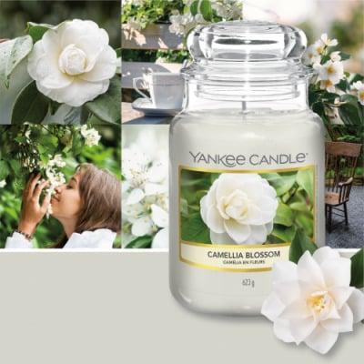 Yankee Candle giara grande Camelia Blossom